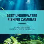 Review of the Best Underwater Fishing Cameras