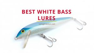 Best White Bass Lures