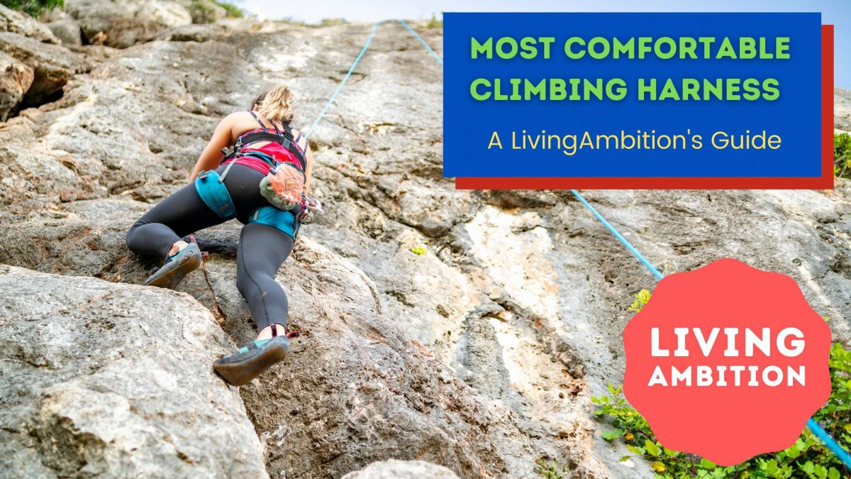 most comfortable climbing harness