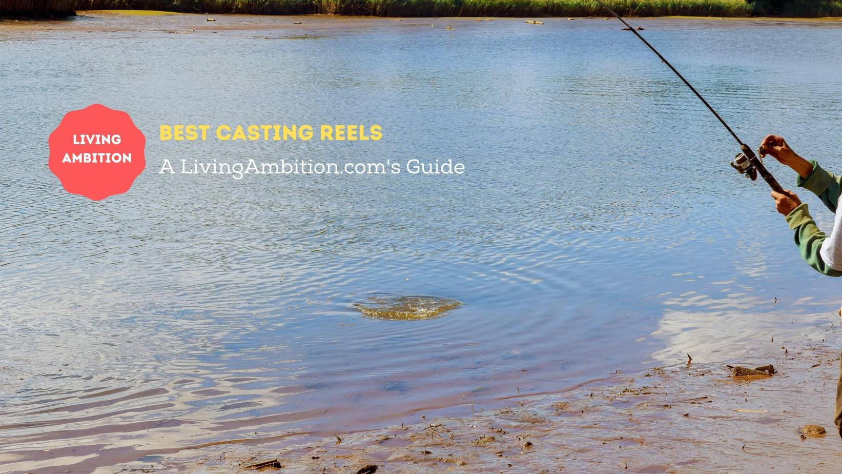 Best Casting Reels