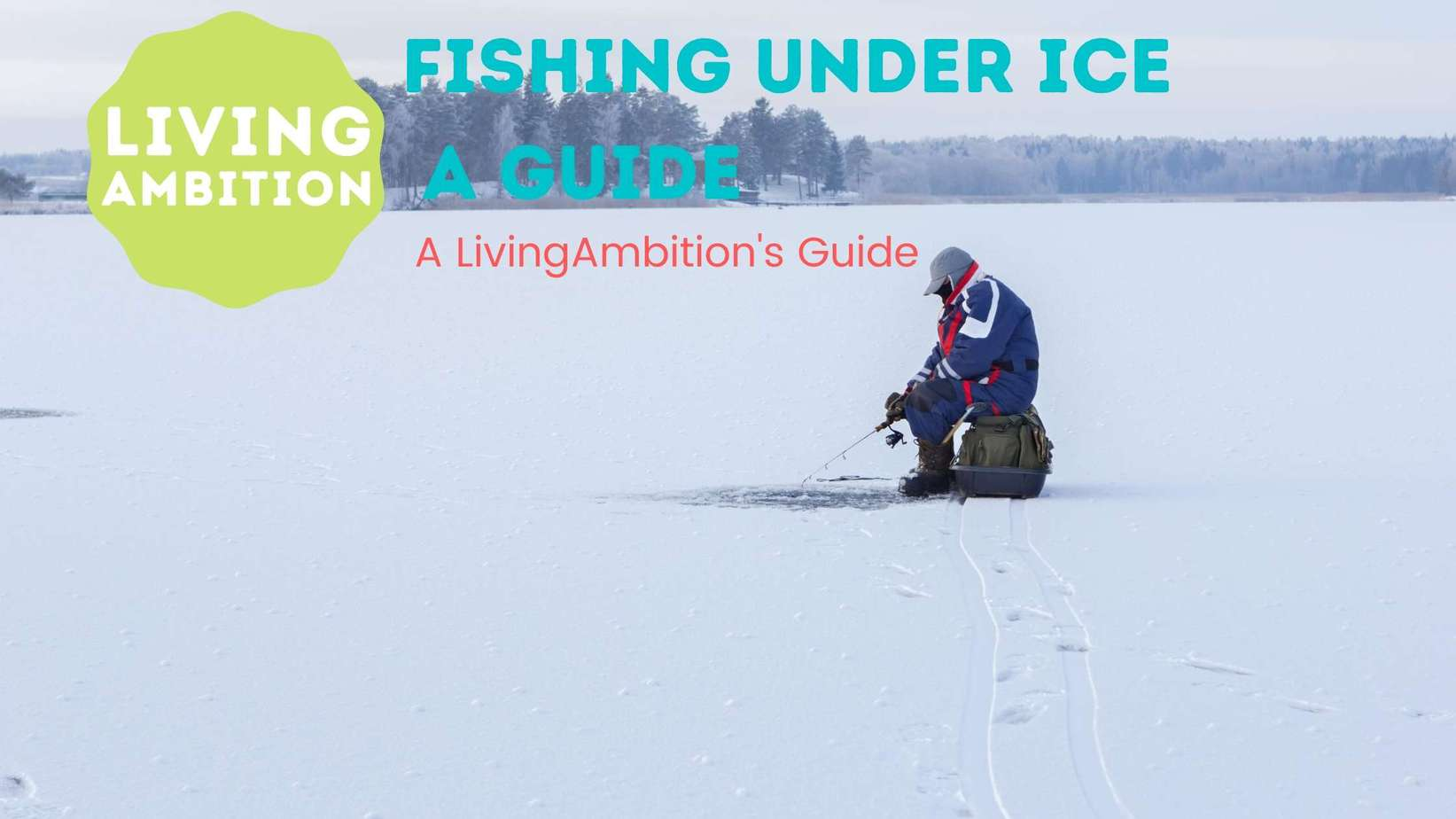 How to Find Fishes Under Ice