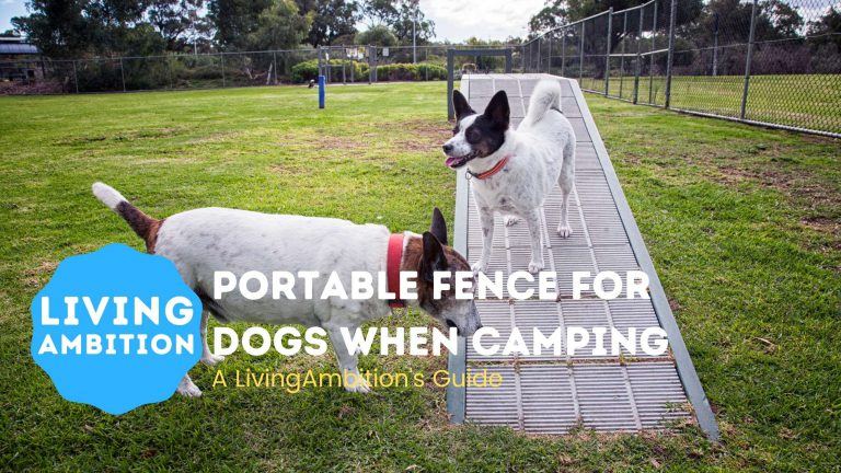 Portable Fence for Dogs when Camping