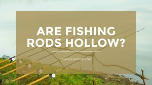 Are Fishing Rods Hollow?