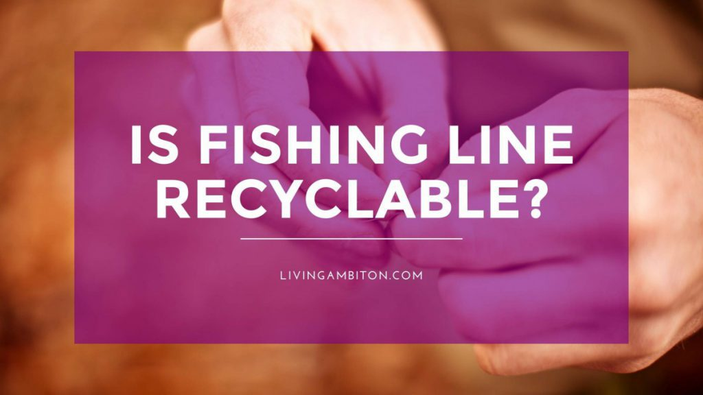 Is Fishing Line Recyclable??
