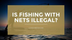 Is Fishing with Nets Illegal?