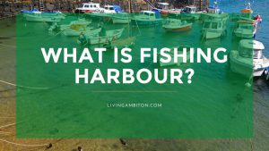What is Fishing Harbour?
