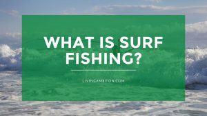 What is Surf Fishing?